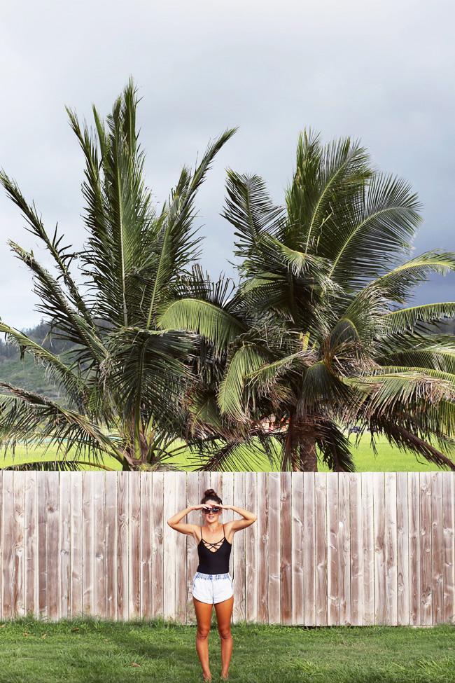 island-fever-2.jpg