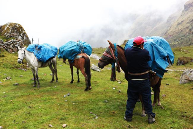 travel-diary-salkantay-4-16.jpg