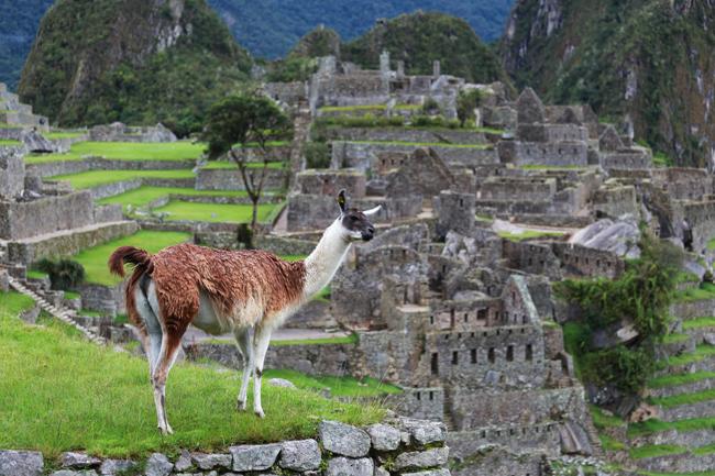 travel-diary-salkantay-4-37.jpg