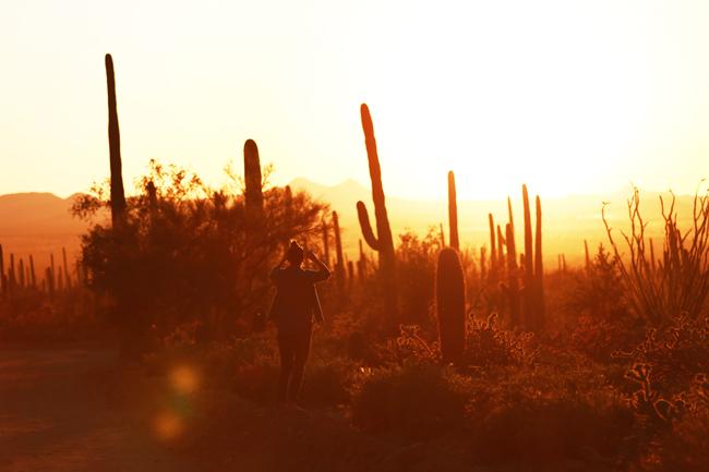 desert-dwellers-42.jpg