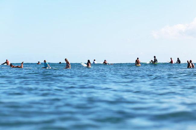 summer-swell-1.jpg
