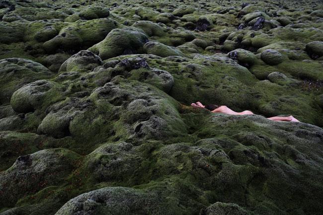 into-the-moss-1.jpg