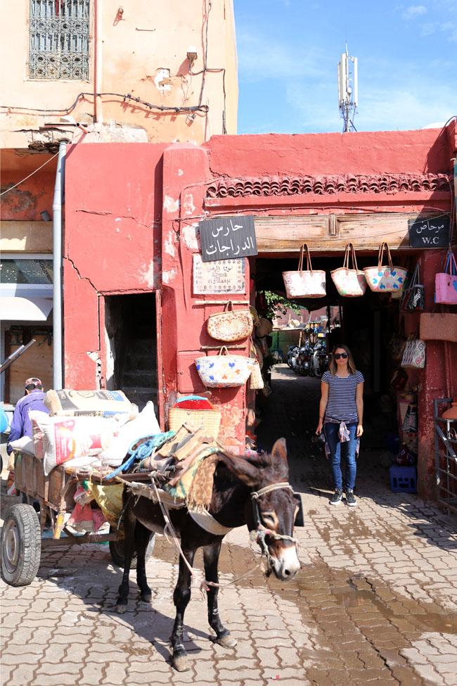 travel-diaries-marrakech-3.jpg