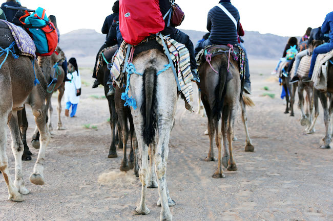 travel-diaries-marrakech-48.JPG