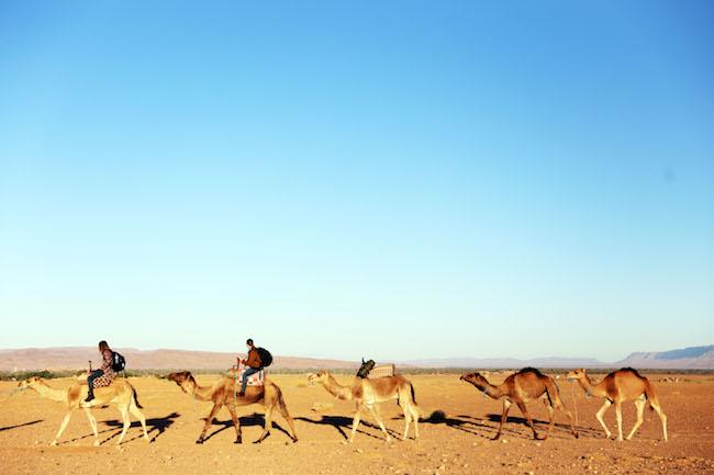 travel-diaries-marrakech-50.JPG