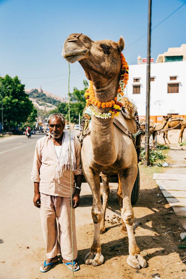 jaipur-187.jpg