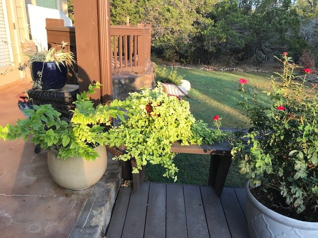 Just another view of our back deck. David has a green thumb.