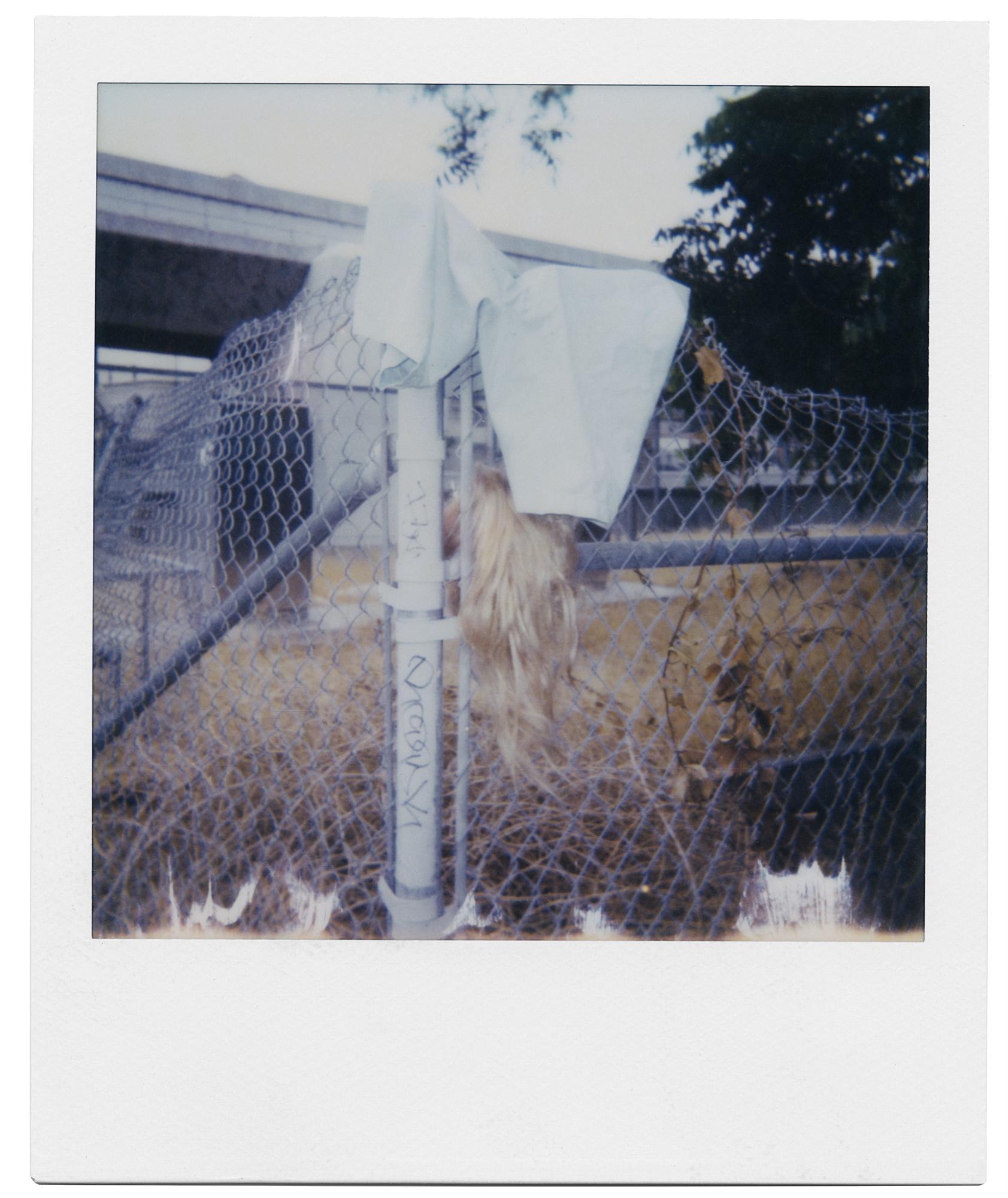 2017_LA_Weave_Polaroid.jpg