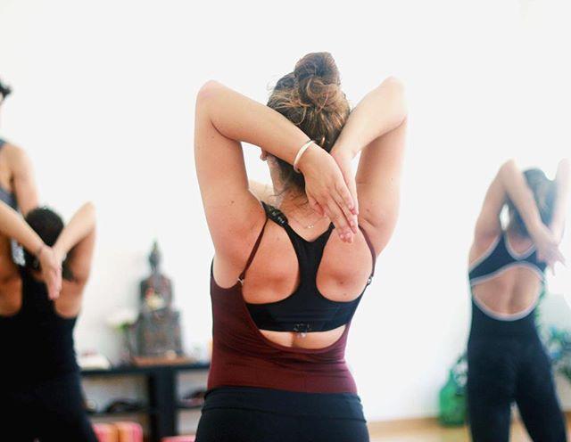 Draga Sangha, idući tjedan otvara se novi yoga studio @equilibriumyogacroatia u Petrovoj 53, u kojem će Integral Vinyasa i Elemental flow satove po metodi na koju ste navikli prakticirati u Sanghi, podučavati učiteljice koje su završile edukaciju kod naše Nine Vukas @ninavukas.yoga • Od 6.5. Equilibrium yoga studio održava tjedan otvorenih vrata (po rasporedu na drugoj fotki). Svi satovi su besplatni, najava nije potrebna. • Sretno našoj Nikolini, Sanji, Katarini i Patriciji @ninazg1987 @sanja_la_ @katarina_gretic • #yoga #yogazagreb #integralvinyasayoga #vinyasaflow #zagreb