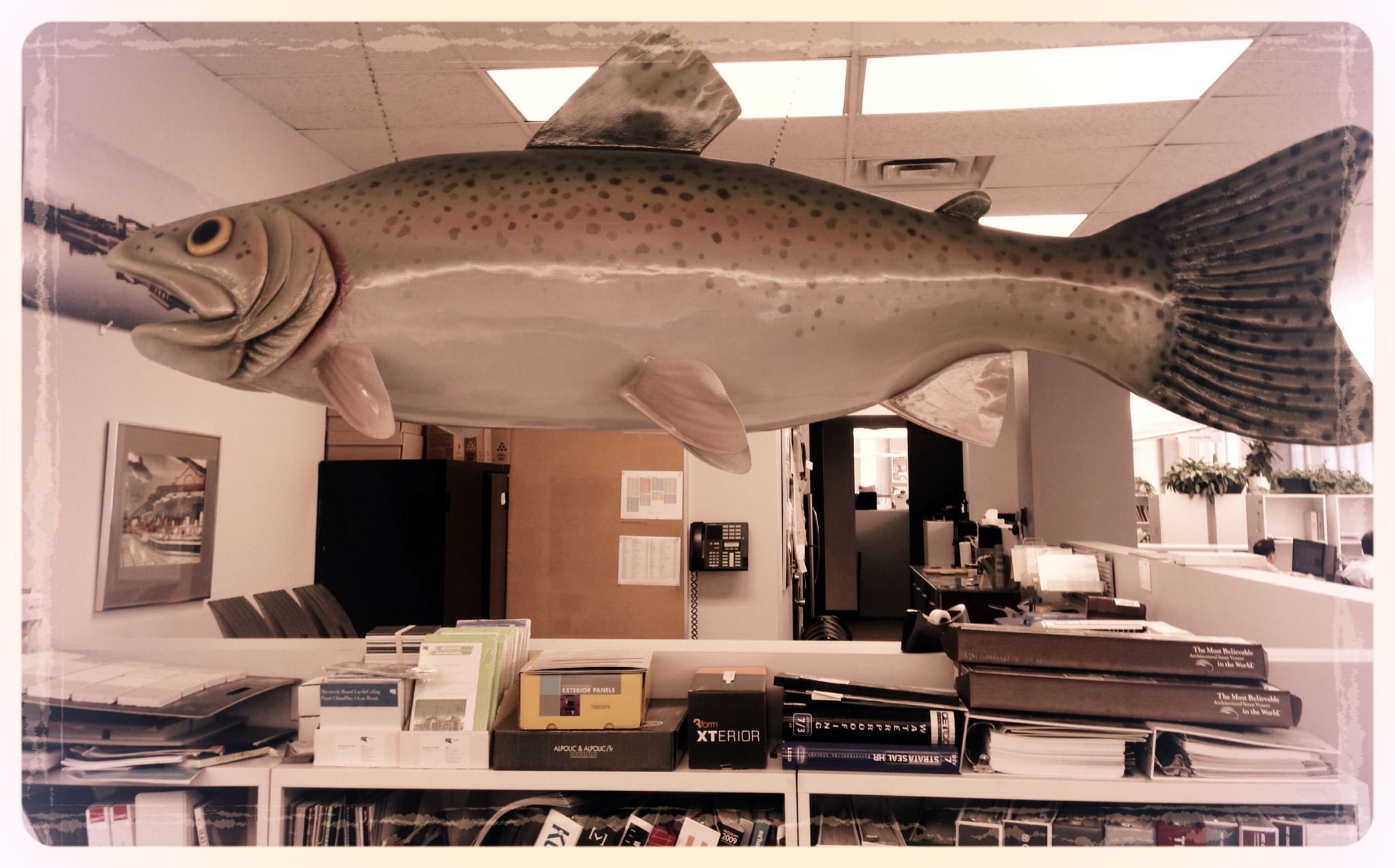 A giant fish.