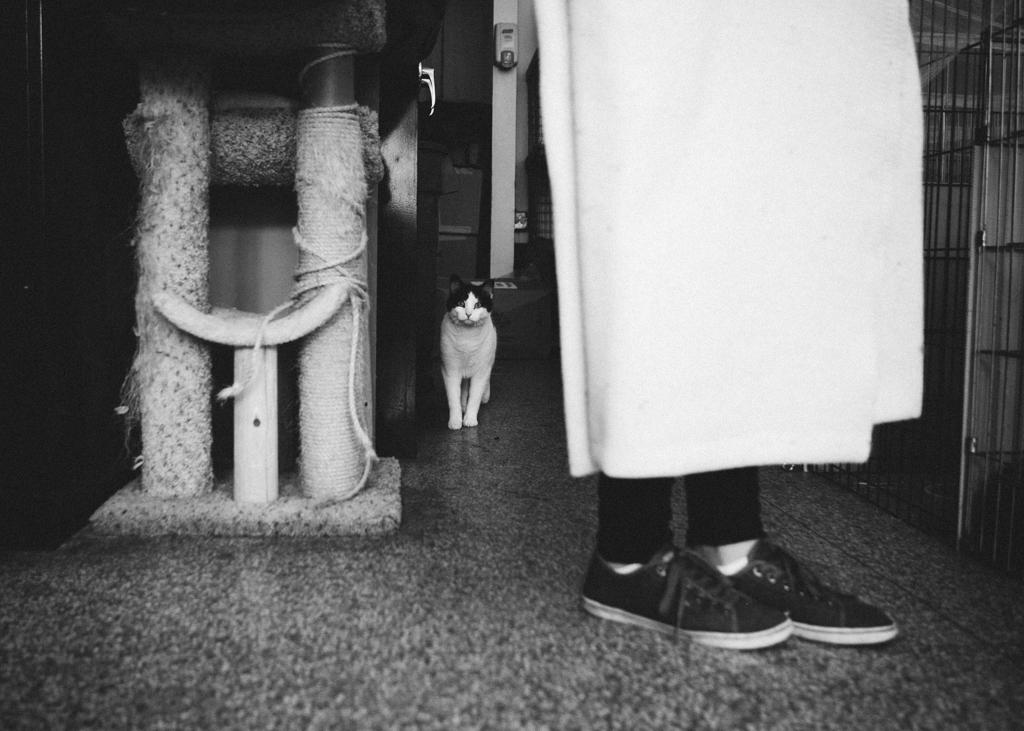 Gracie Hagen Red Door Animal Shelter 18.jpg