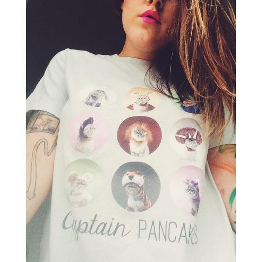 gracie hagen captain pancakes internet famous cat cute fuzzy adorable exotic shorthair