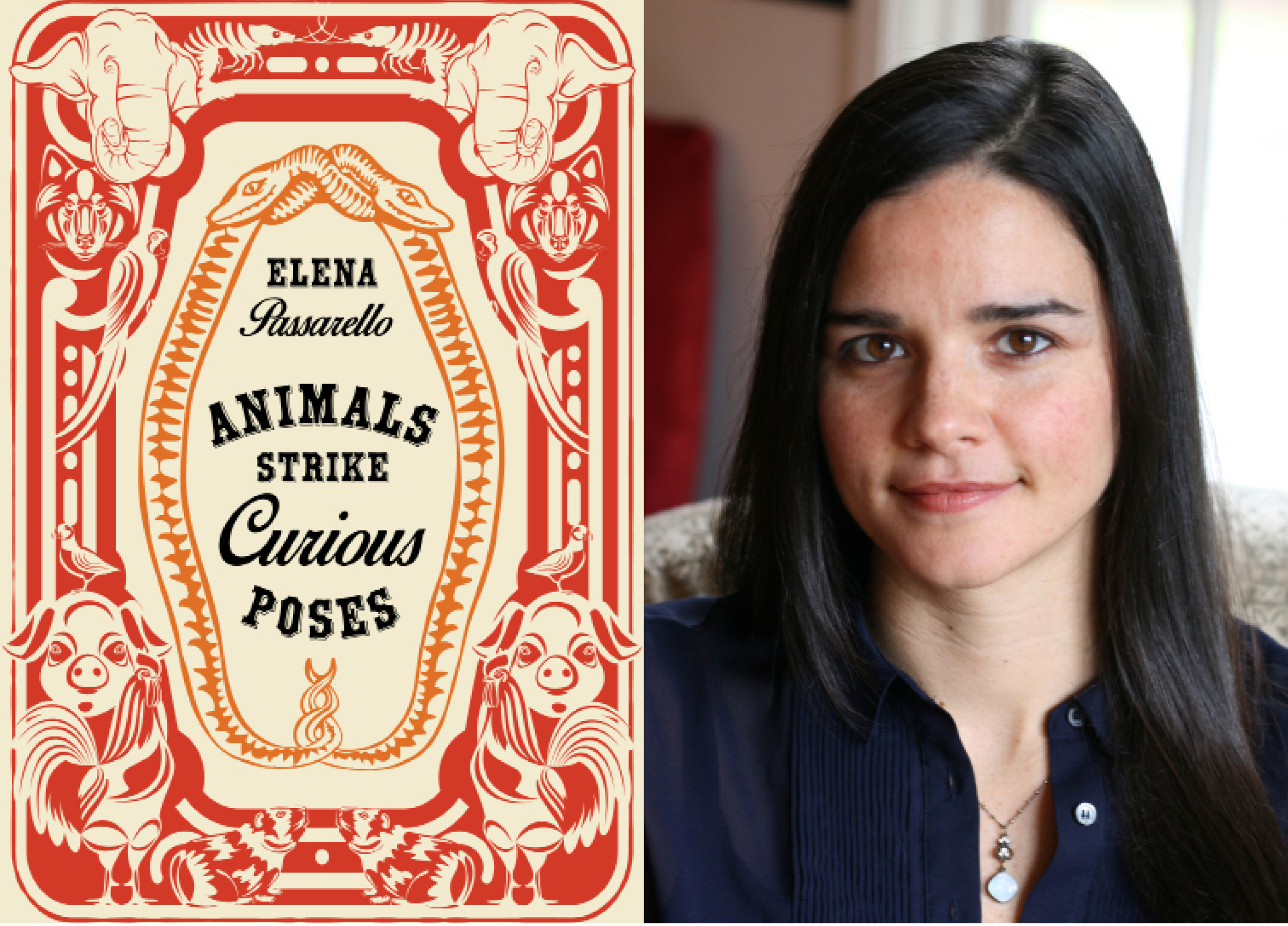 "- ""None of the essays I'm proudest of would exist without Sarabande's particular way of finding, nurturing, and promoting the essay."" — Elena Passarello, author of Animals Strike Curious Poses"