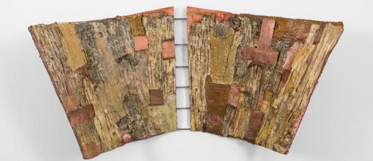 Joan Giordano, White Birch Deforestation