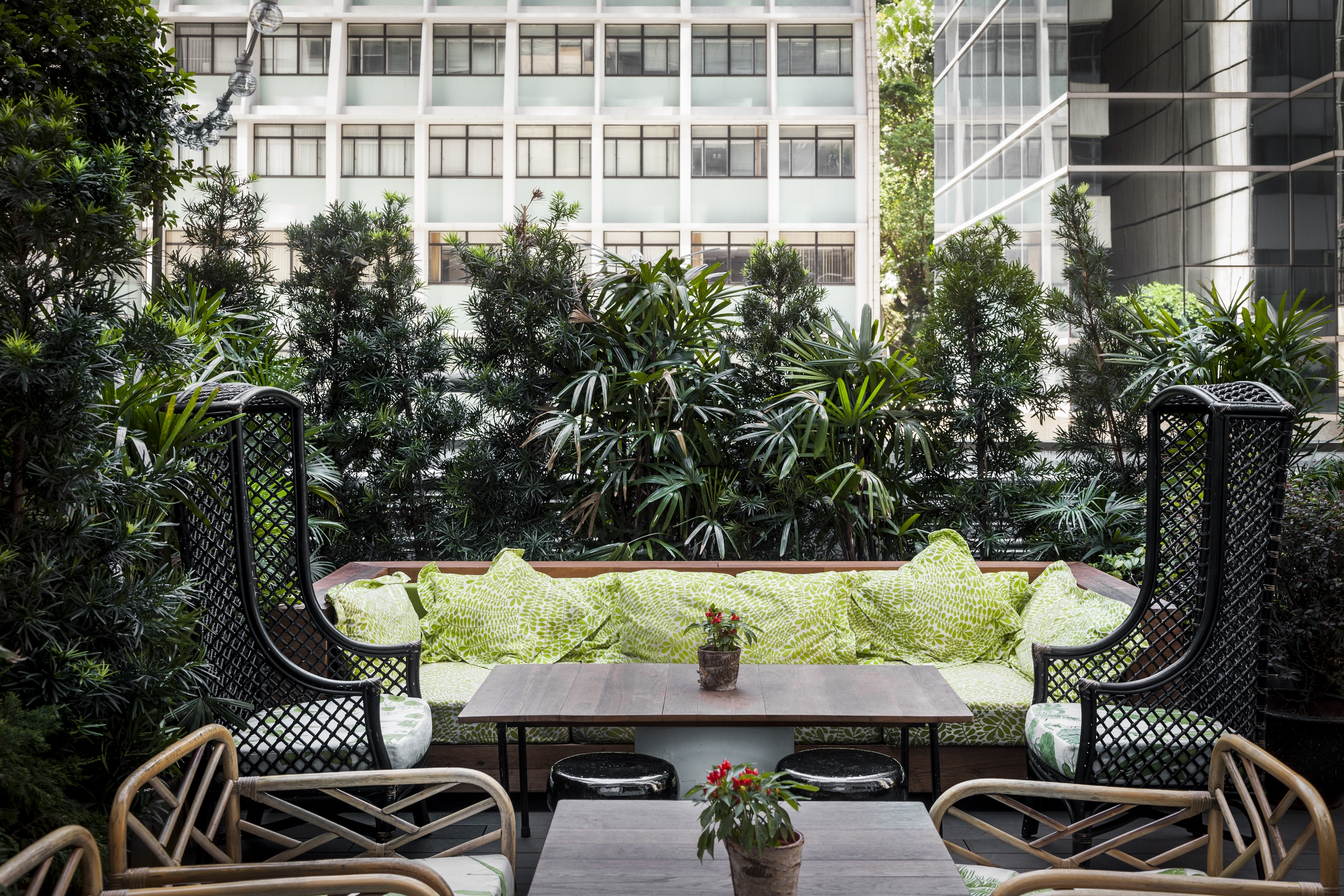 It's a jungle out there... The green and serene rooftop garden terrace