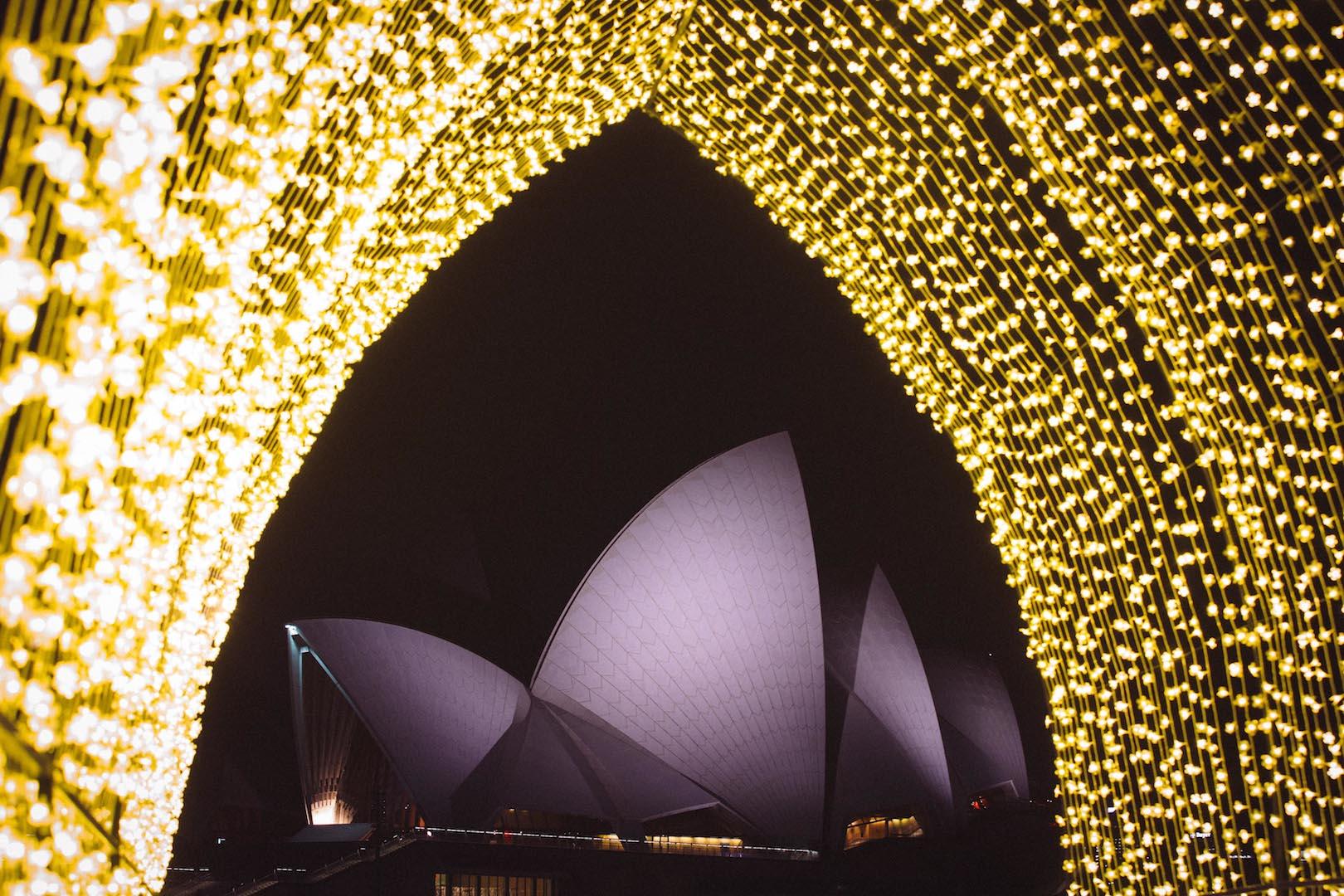 Vivid Sydney 2016 - Cathedral of Light_The Royal Botanic Garden Sydney_CREDIT_Destination NSW_DB082.jpg
