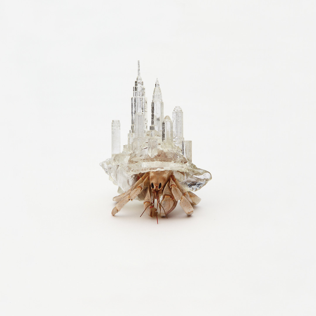Aki Inomata, Why Not Hand Over a 'Shelter' to Hermit Crabs series, 2009–16_Courtesy of Maho Kubota Gallery copy.jpg