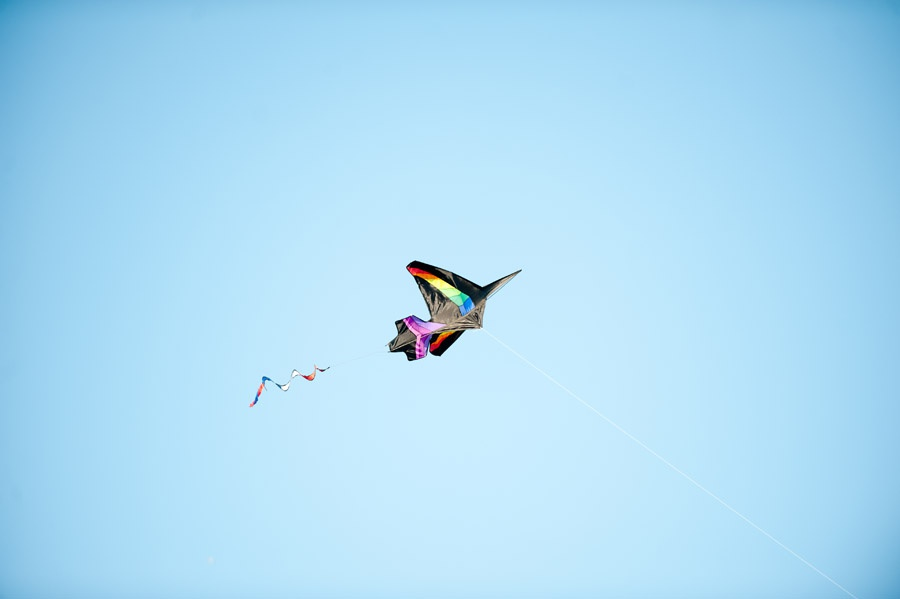 Austin_Travel_Writer_Photographer_Zilker_Kite_Festival_6.jpg