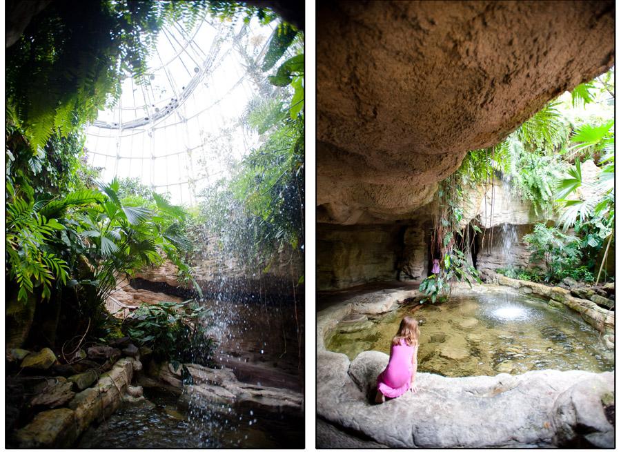 Austin_Travel_Writer_Photographer_butterflies023.jpg