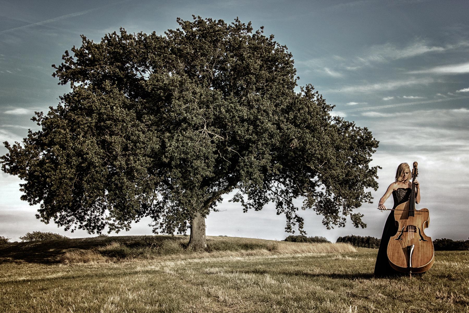 S5001b - Johnny Kristensen - Sound of music.jpg