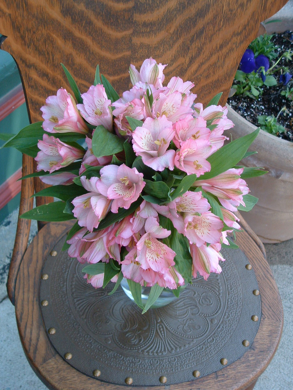 basic blooms Alstromeria Package
