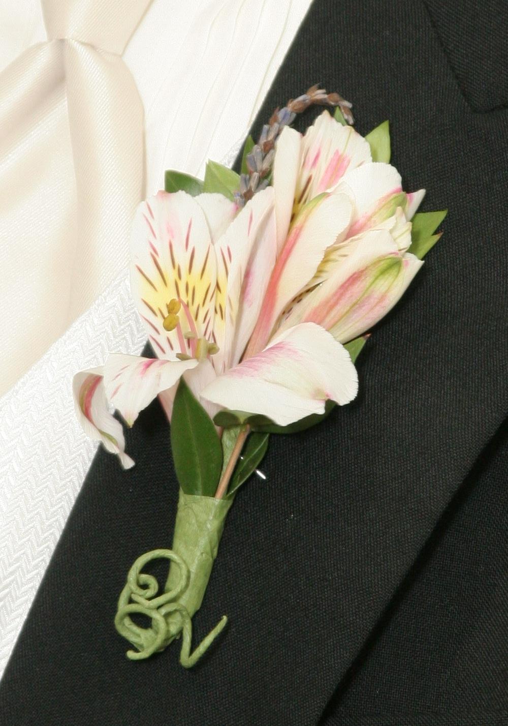 basic blooms Alstromeria Package