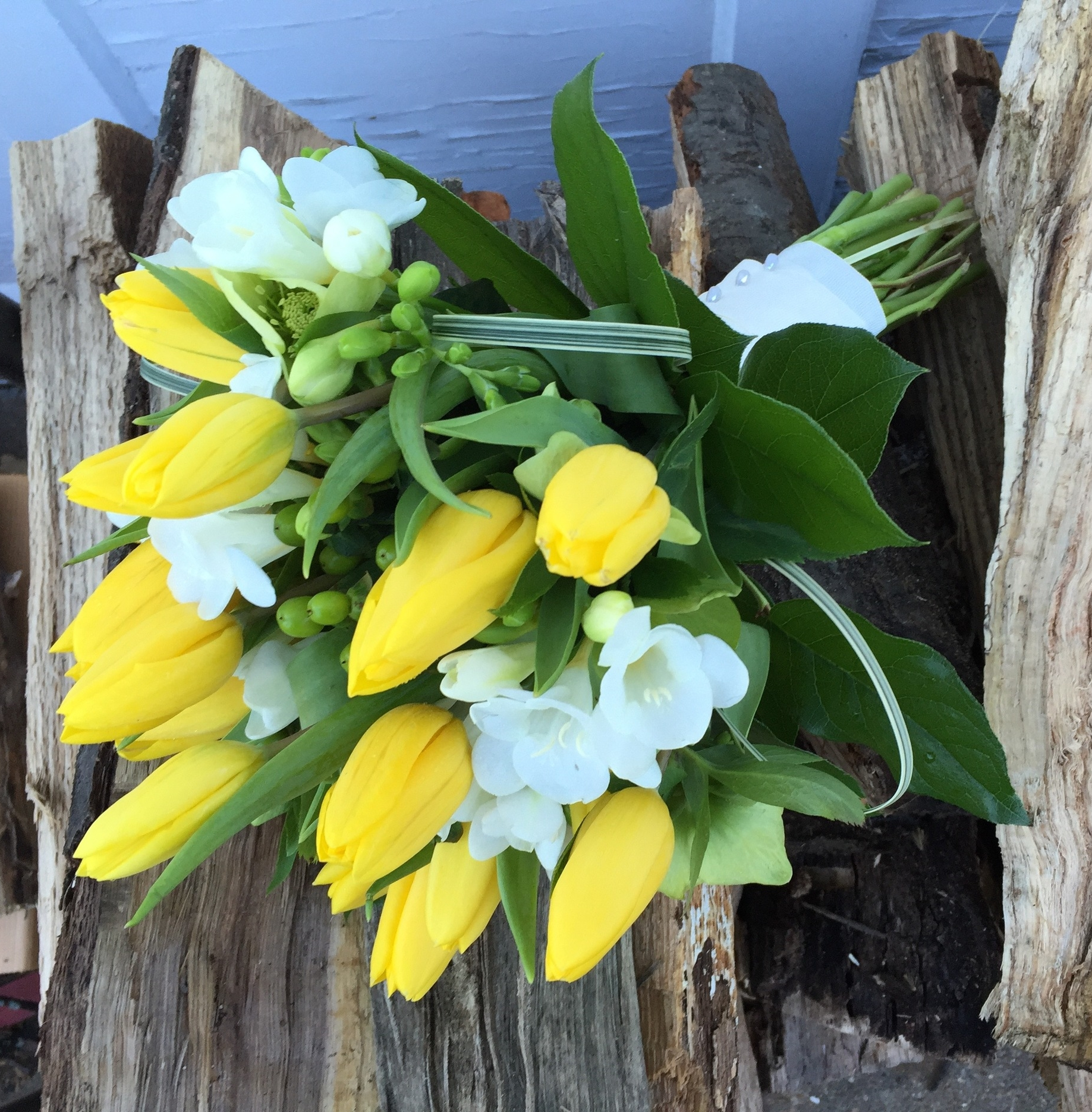 Yellow tulips and white freesia