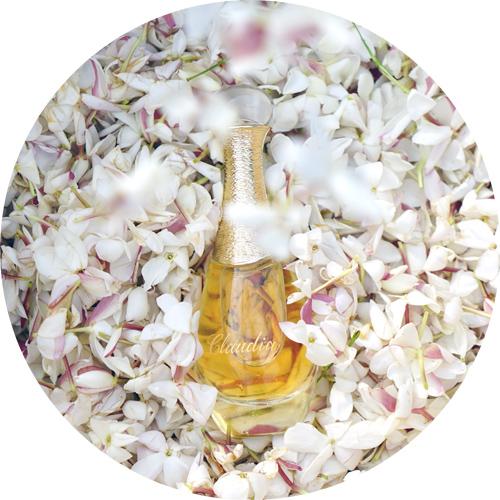 j'adore l'or jasmine harvasting le domain de manon2.jpg