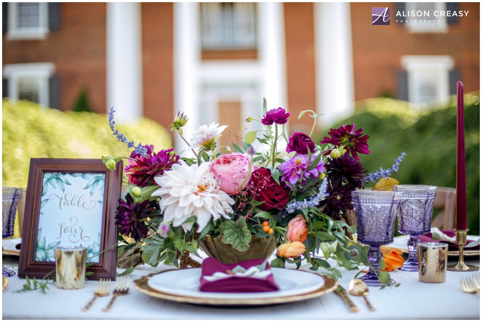 Alison Creasy Photography_West Manor_Lynchburg VA 6.jpg