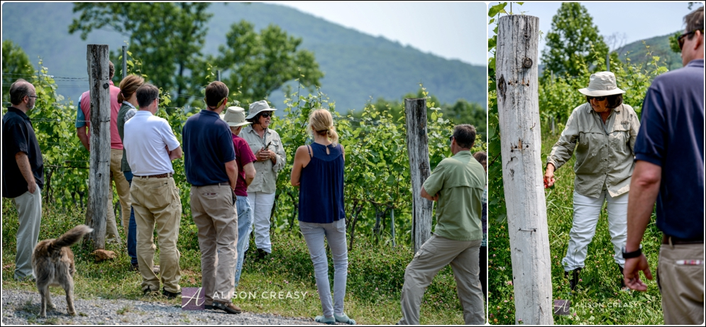 Commercial_Photography_Wine_Event_Alison_Creasy_Photogarphy_Virginia_0013.jpg