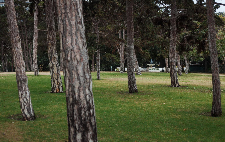 Lakeview Park at Lake Merritt in Oakland, Calif.