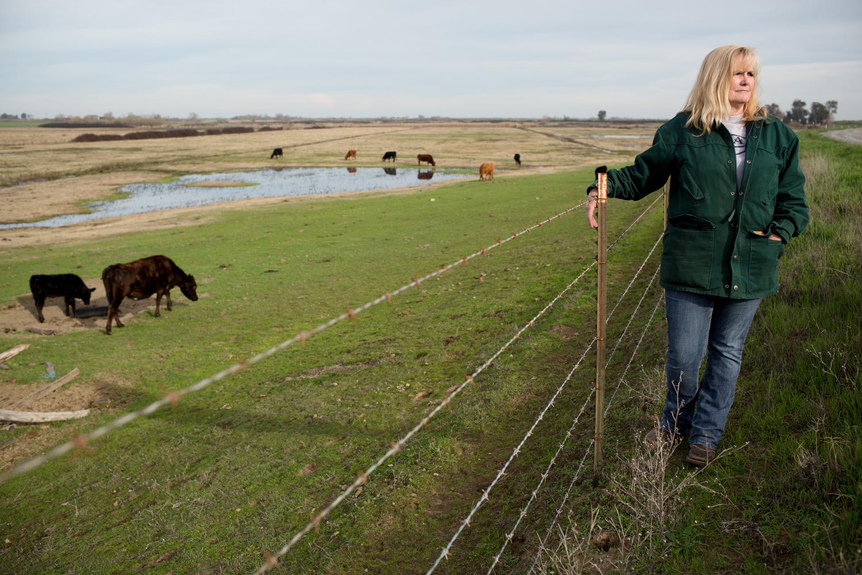 Karen Cunningham  A rancher on Bradford Island in the Sacramento–San Joaquin River Delta.