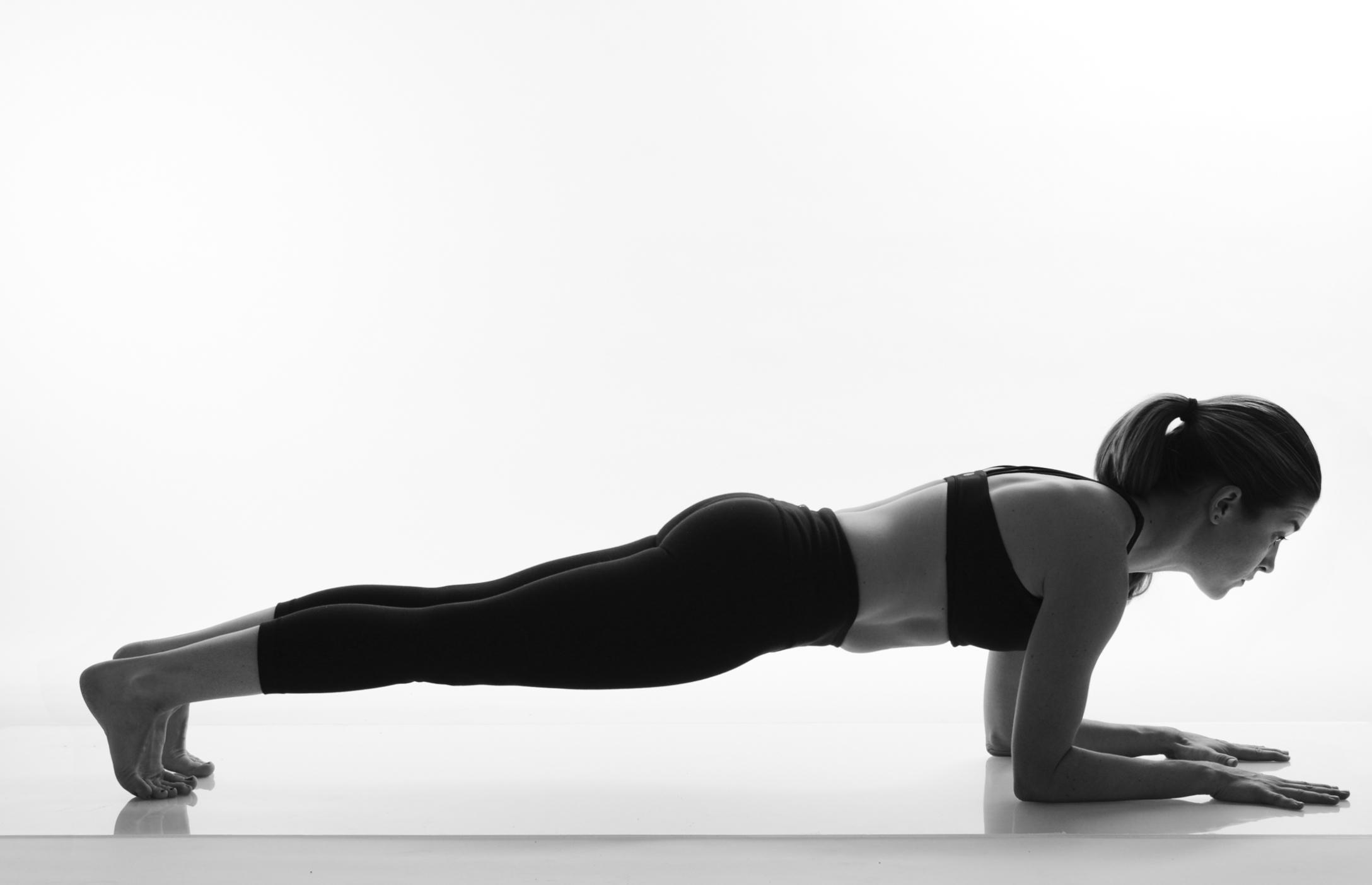 dolphin plank 2014.jpg