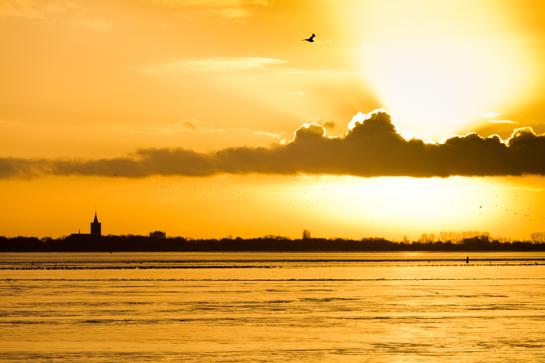 Flevopolder, The Netherlands