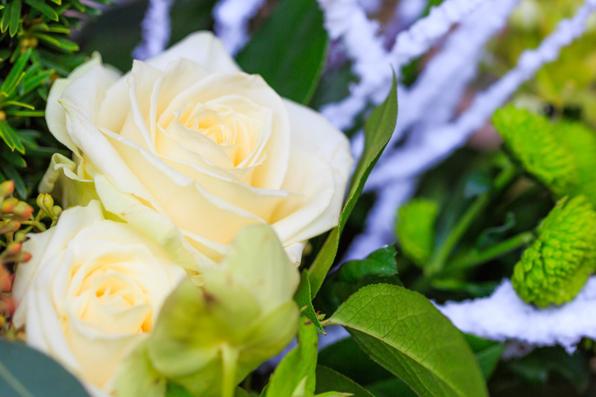 Wedding - YW8A1548.jpg
