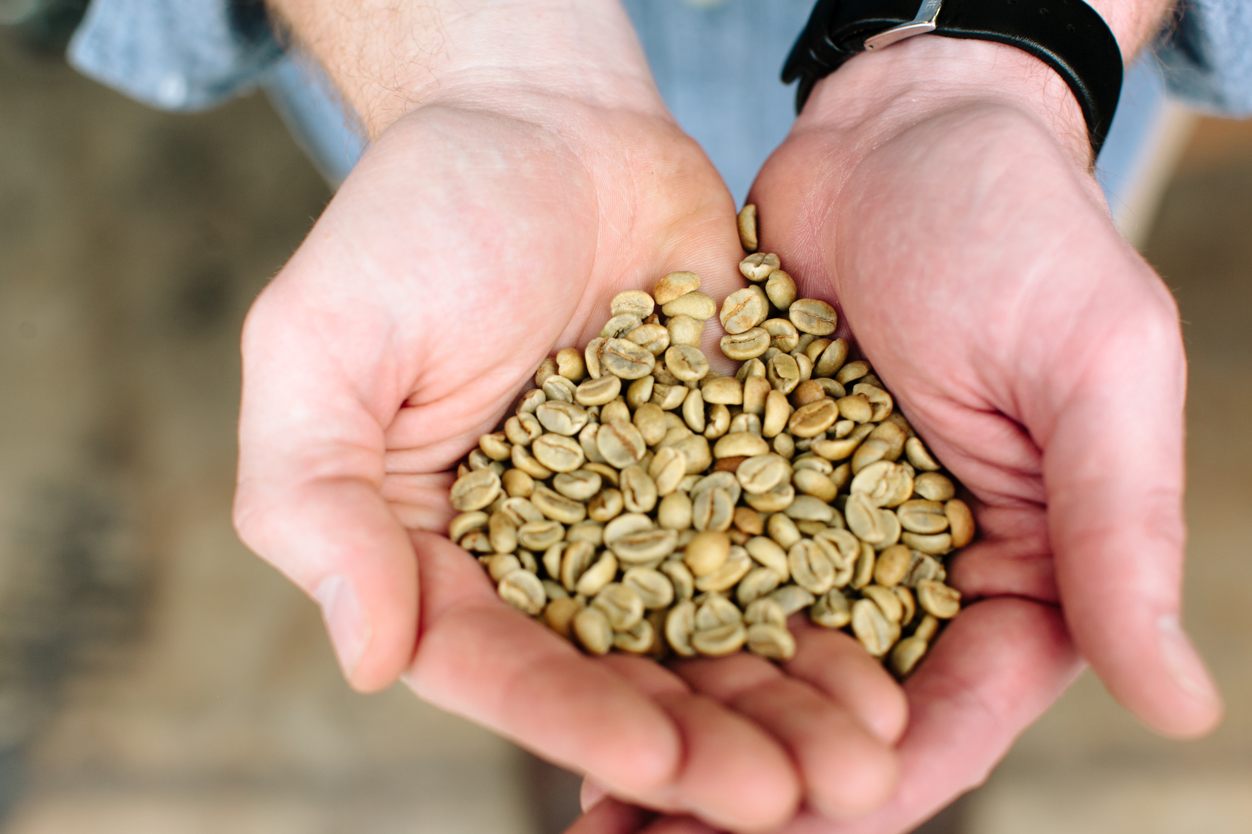 Kathryn-McCrary-Photography-THRIVE-Farmers-Coffee-1.jpg