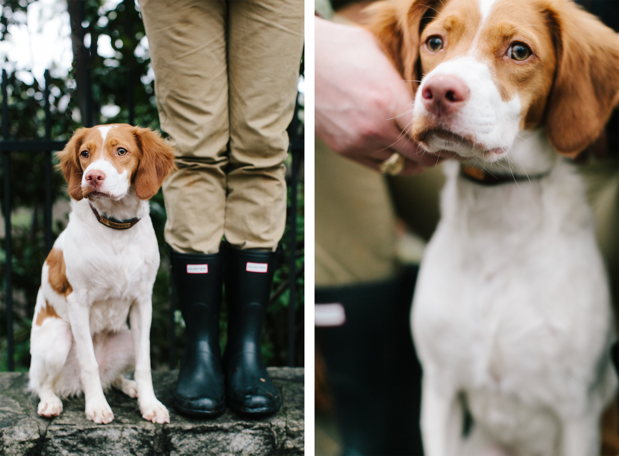 Kathryn-McCrary-Photography-Penny-Puppy-Rain-Hunter-Boots-4.jpg