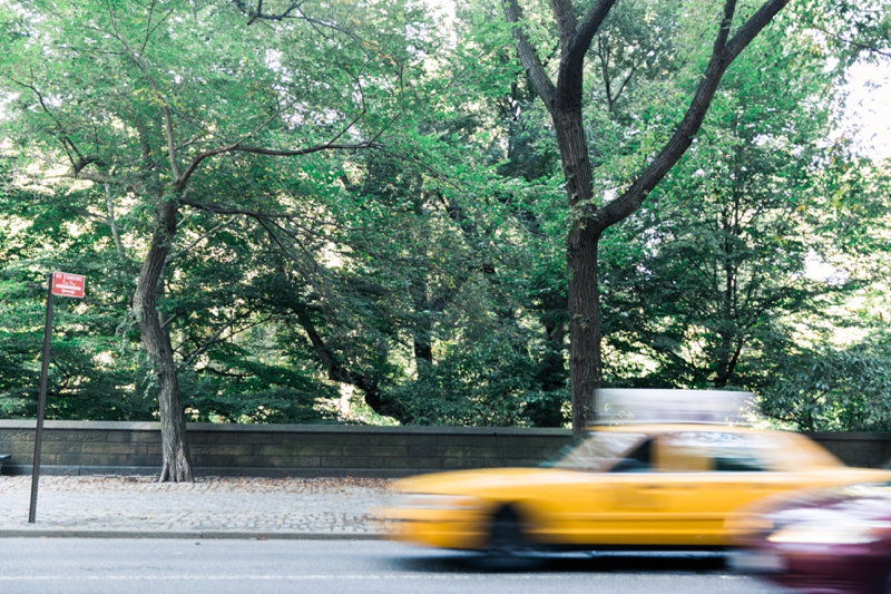 Kathryn McCrary Photography Central Park NYC College Prepster_0002.jpg