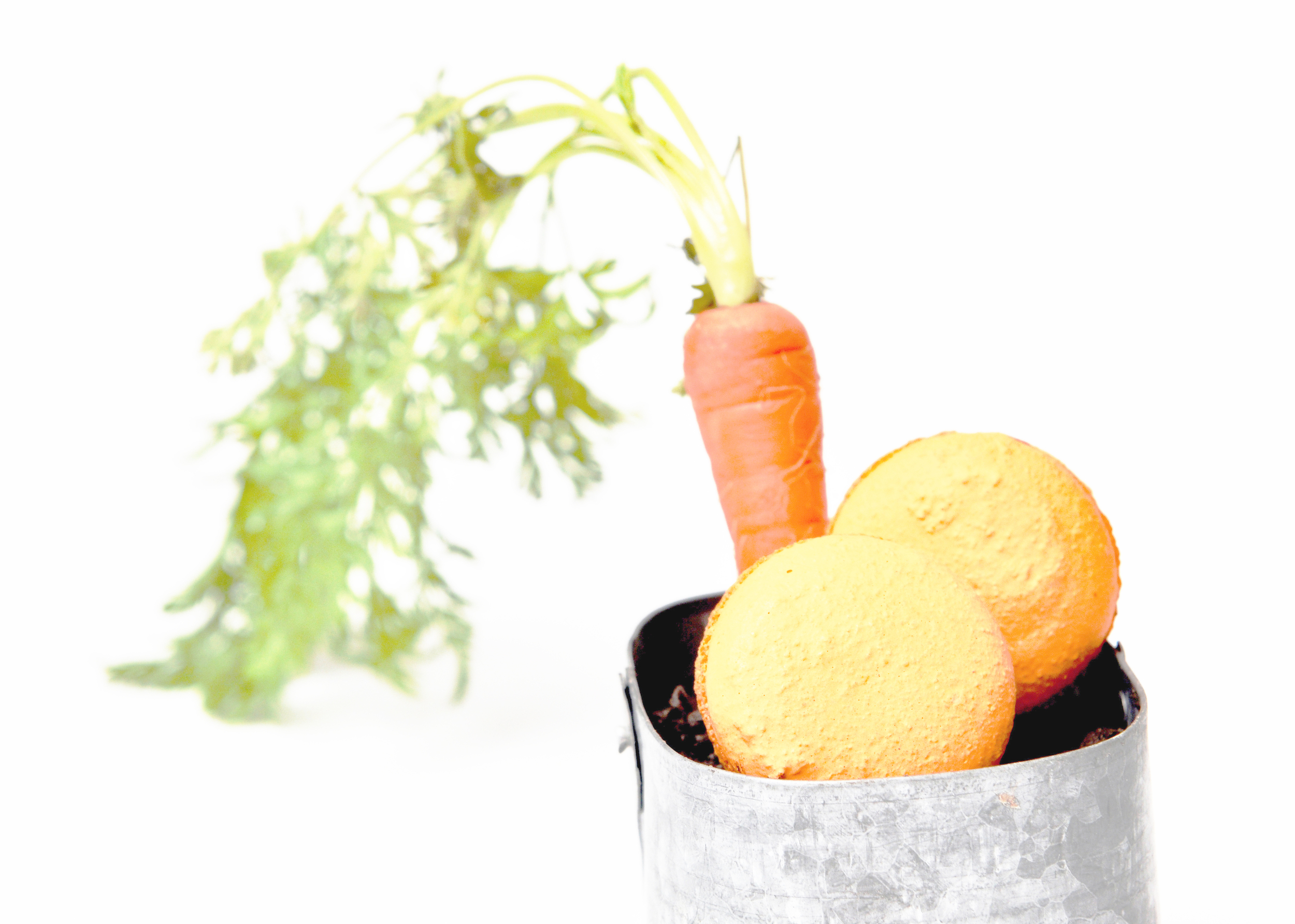 carrotcake3.jpg