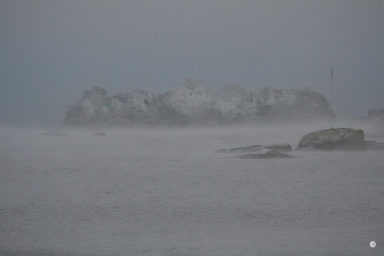 Vinterkyst-i-Vestfold-stiger-i-take-IMG_7599.jpg