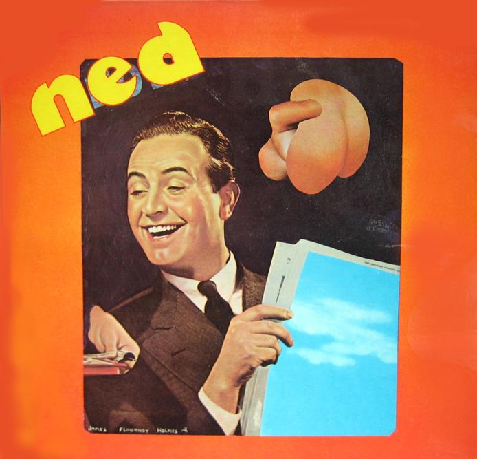 Ned 1973