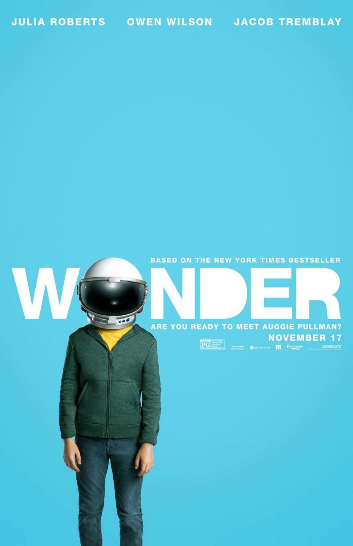 wonder_xlg-1.jpg