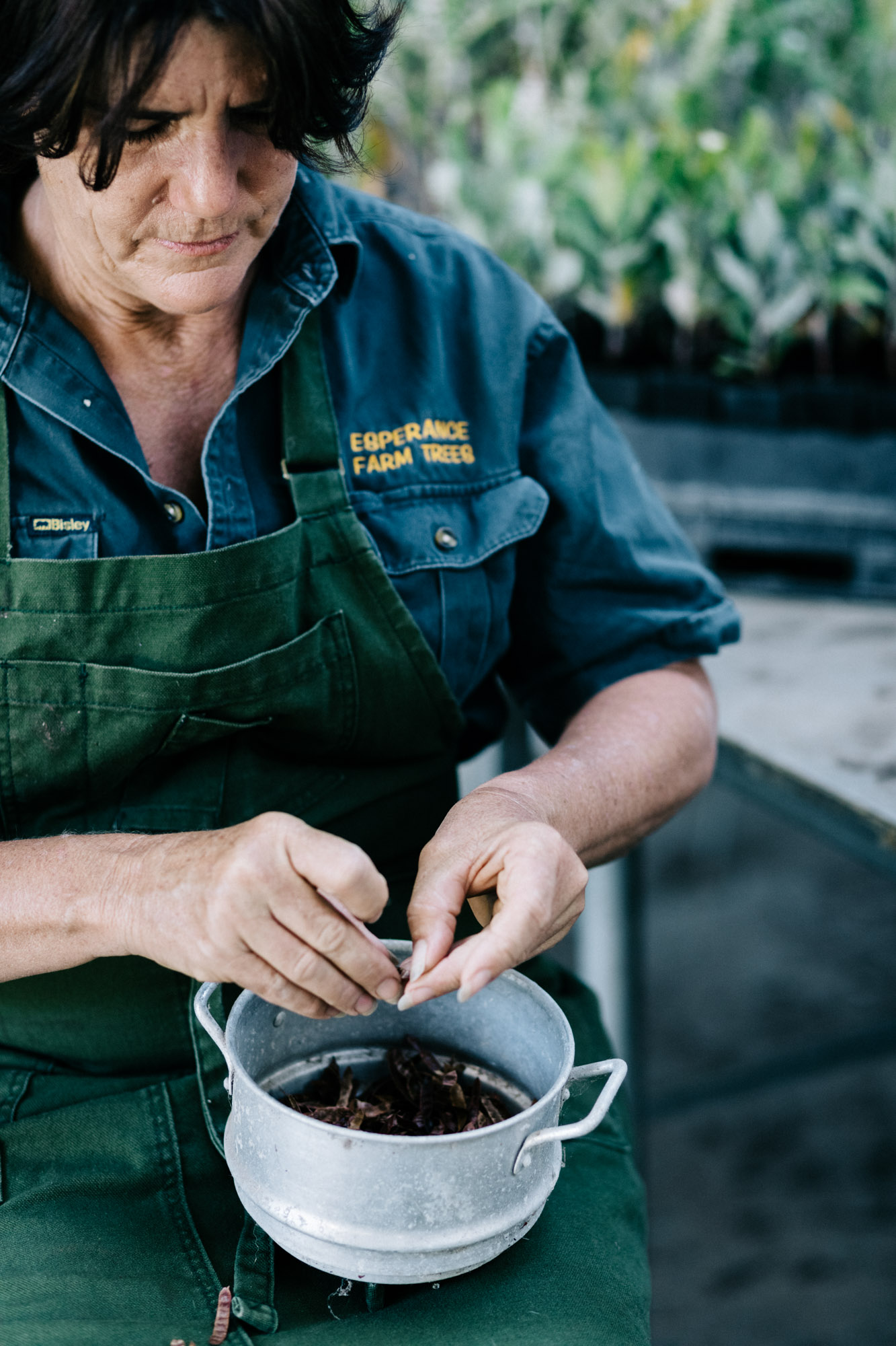 Marnie Hawson, Melbourne lifestyle photography, for Esperance Farm Trees and Country Style