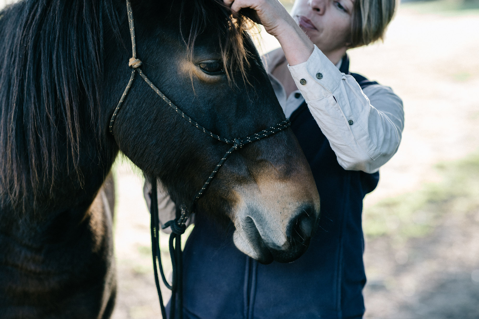 Marnie Hawson, Melbourne ethical photographer for Victorian Brumby Association and Country Style