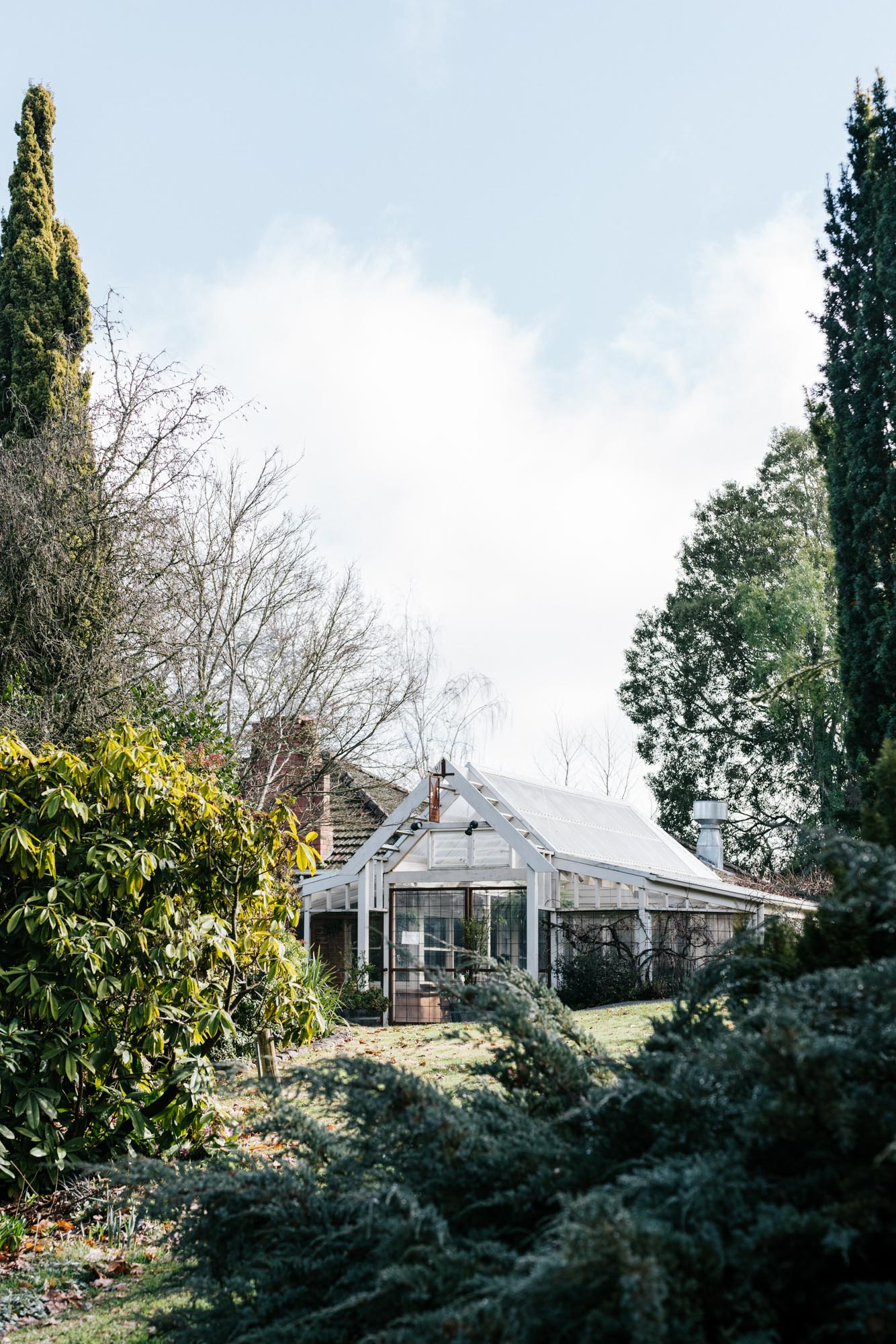 Hunting for truffles in Victoria's Central Highlands for Airbnb , photography by Marnie Hawson.