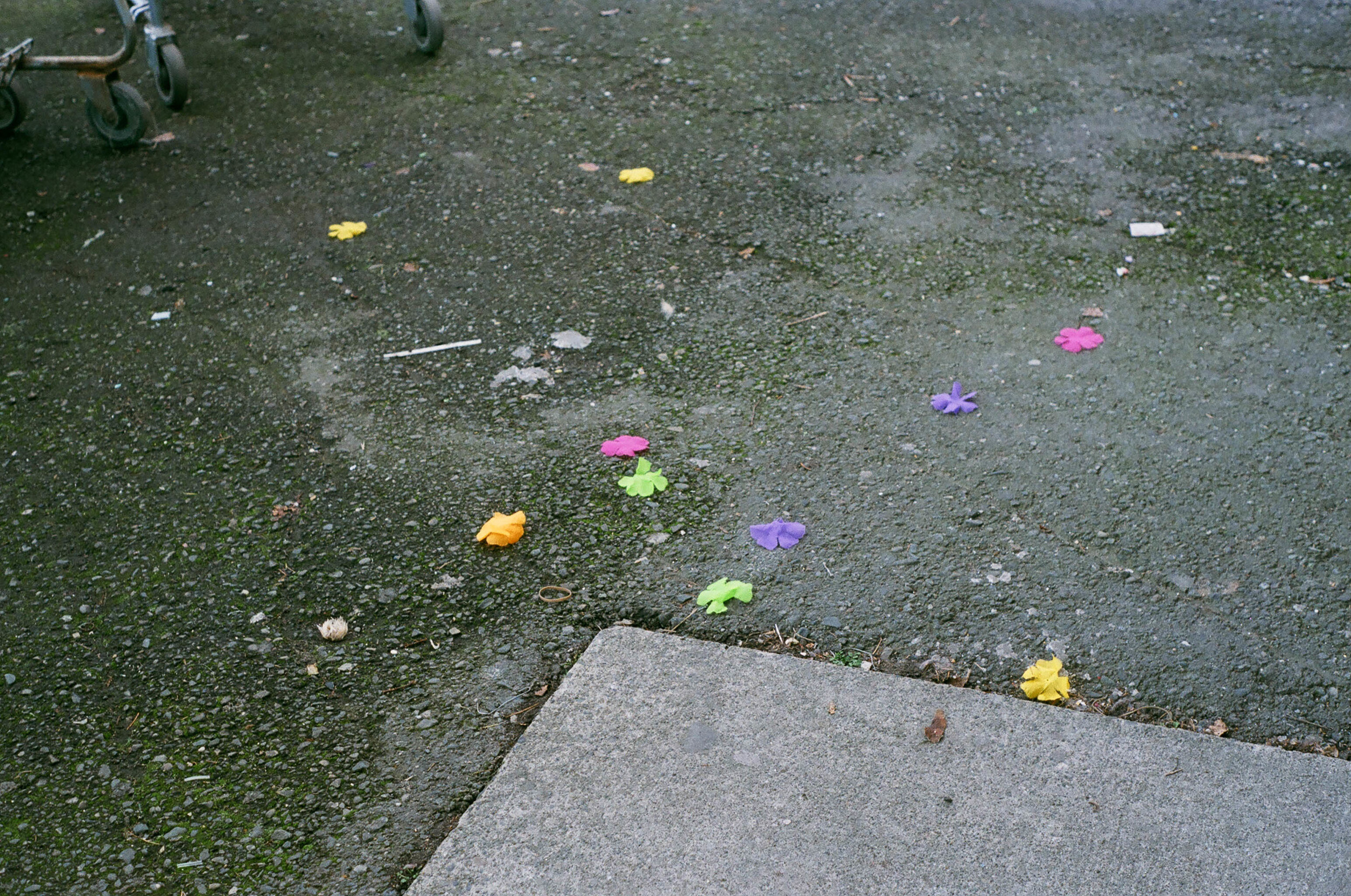 parking lot flowers-1.jpg