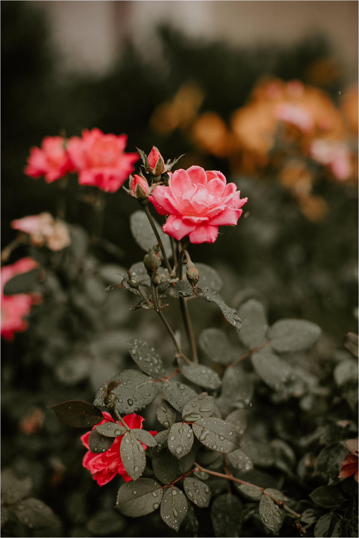 Sarah_Brookhart_Philadelphia_Wedding_Photographer_0009-1.jpg
