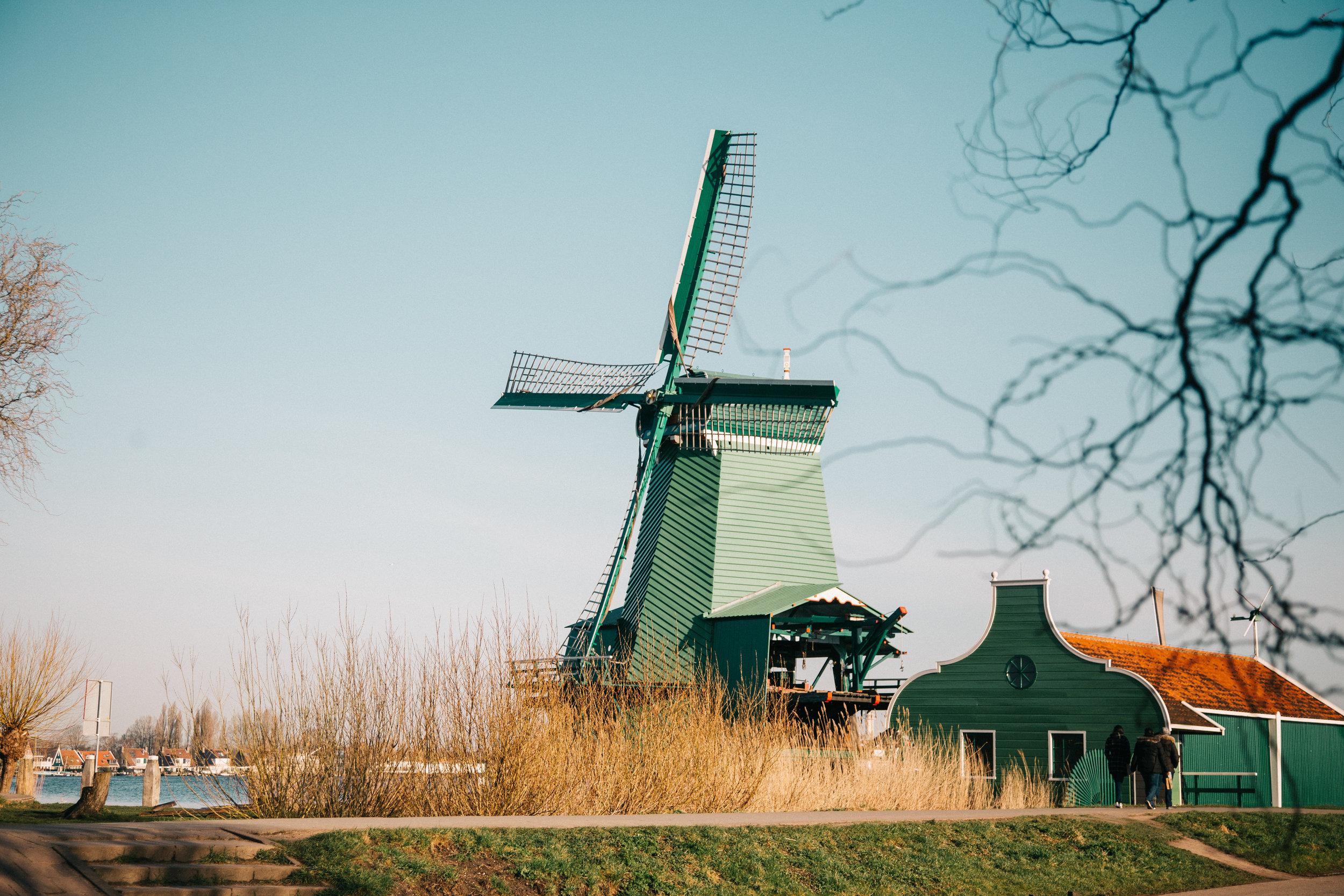 windmills-2.jpg