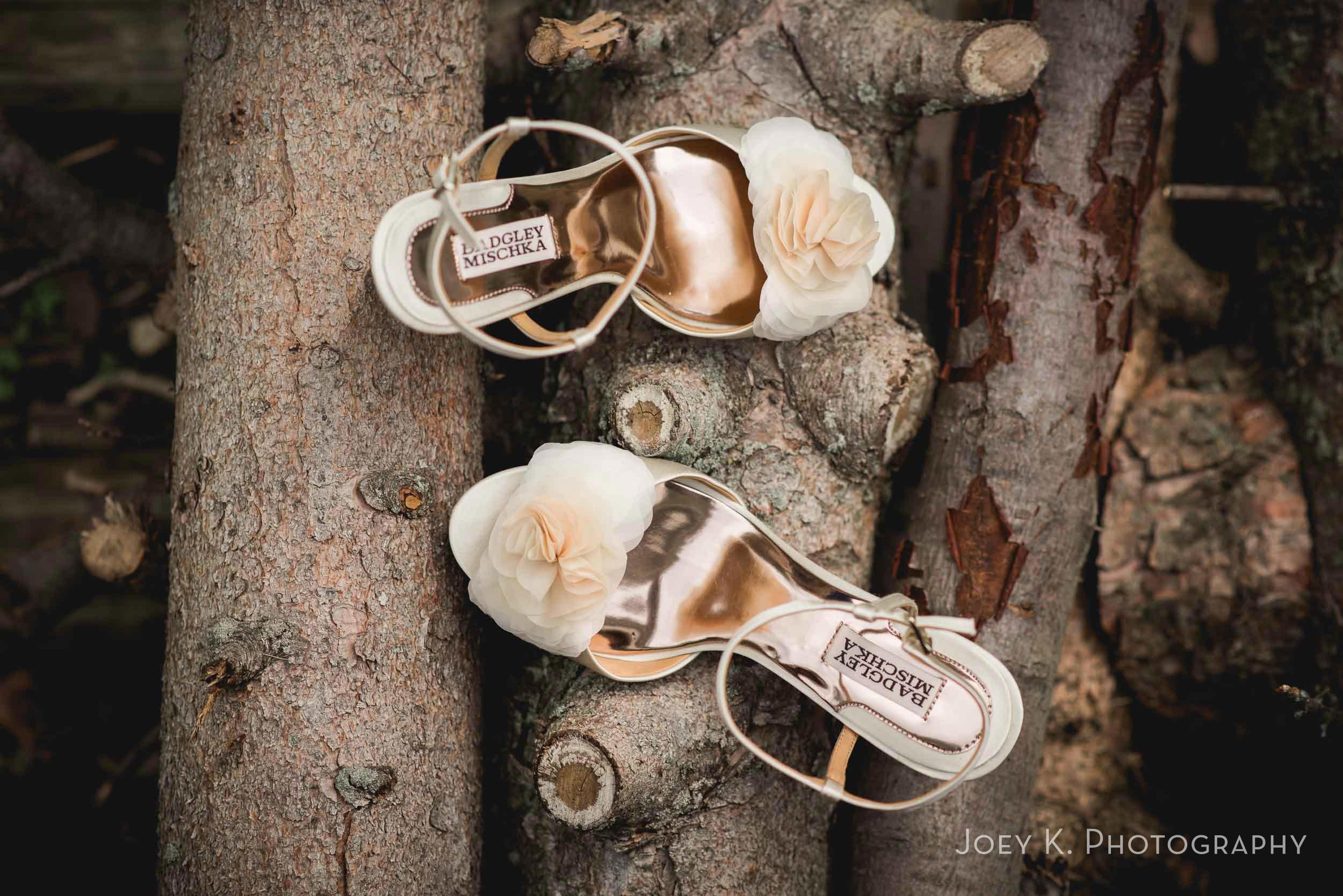 tiffin-cleveland-ohio-wedding-photographer-003.jpg