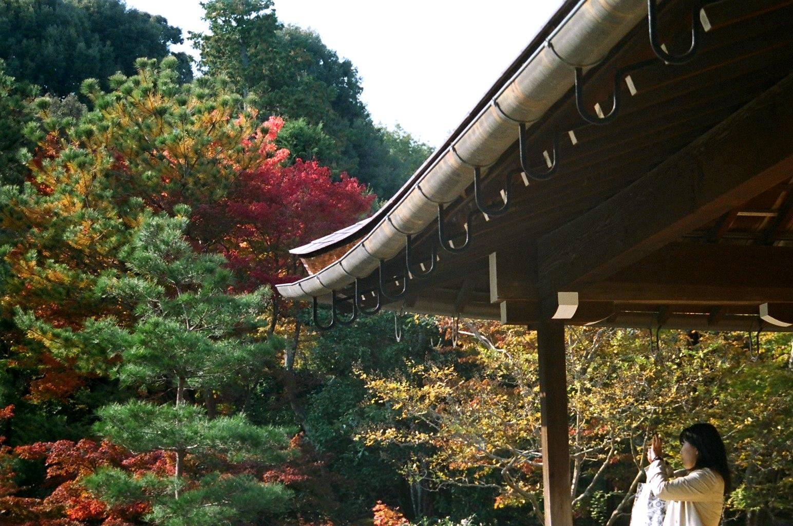 KYOTOARASHIYAMA4.jpg